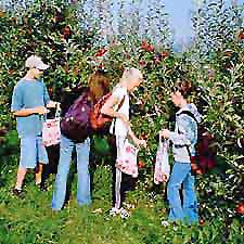 bring your class to Masker Orchards!